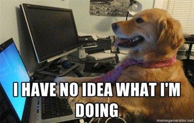 """AdWords - Cachorro digitando em teclado de computador com os dizeres """"i have no idea what i'm doing"""""""